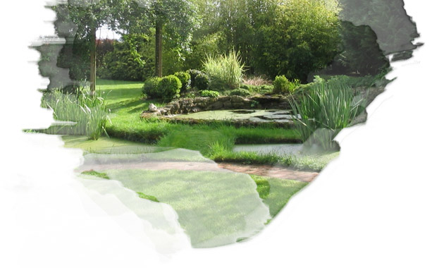 Cr ation de bassins sur la c te d 39 opale jardins d 39 evea for Creation bassin de jardin